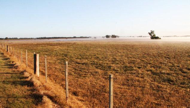 """imagen de """"Hubo mucho ruido"""" y más consultas de argentinos por campos en Uruguay, pero """"se concretó poco"""", según operadores de Argentina"""