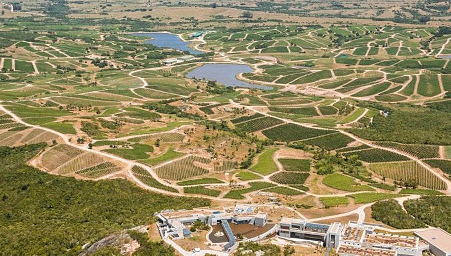 imagen de Bodega Garzón en el Top 100 Wineries de Wine & Spirits