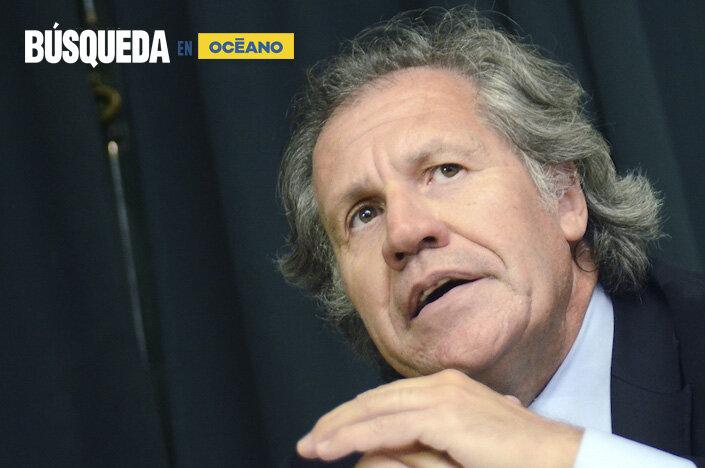 imagen de Almagro reconoce que operó políticamente para sacar a Evo Morales del poder