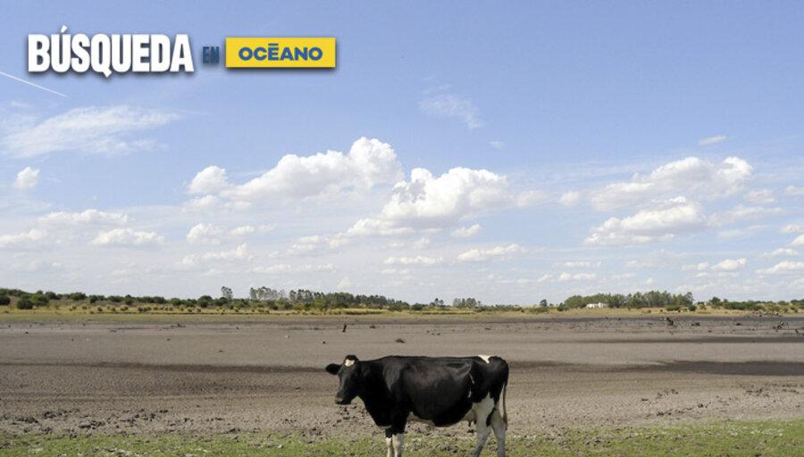 imagen de Estado de suelos marca un déficit hídrico en zonas del litoral norte y algo del este, con el riesgo de menos lluvias en verano