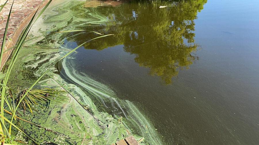 """imagen de Canelones comenzará a cobrar una tasa a los padrones que rodean los lagos de Ciudad de la Costa, para atender su situación """"crítica"""""""