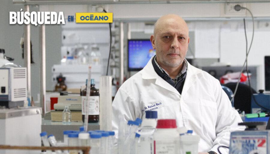 imagen de Radi advierte un escenario complejo y no confía en llegar a mediano plazo a una inmunidad de rebaño con las vacunas Sinovac