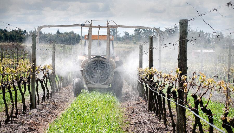 imagen de Gobierno y FAO buscan generar información estadística creíble que permita medir el peso de la bioeconomía en la producción